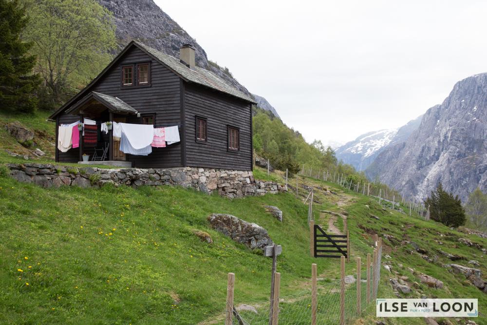 Noorwegen Vrij werk